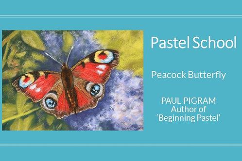 PASTEL SCHOOL Peacock Butterfly