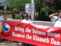 California, Oregon & Tribes Advance the Most Ambitious Salmon Restoration Effort in History
