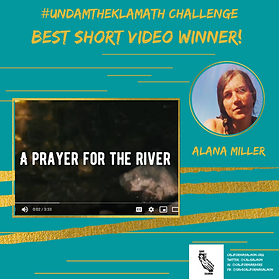 Best Short Video - Alana Miller.png