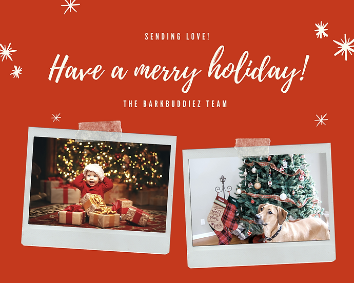 Red Christmas Family Holiday Photo Colla