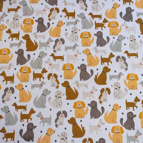 Jen Hadfield Puppy Park Paper