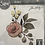 Thumbnail: Thinlits: Flower Dies Rose