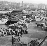 1907 Queen's Wharf