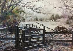 Path by Freedown Paddock