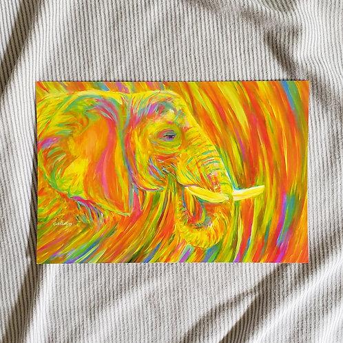 Psychedelic Elephant - Fine Art Print