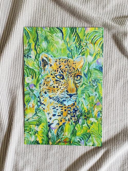 Jungle Cat - Fine Art Print
