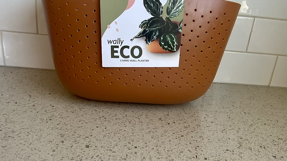 WallyGro Planter Terrecota