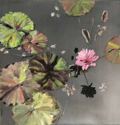 Pink Water Lily.jpg