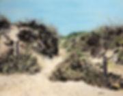 Through the Dunes.jpg