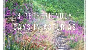 4 Pet-Friendly Days in Asturias