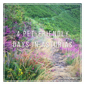 4 Pet-Friendly Days in Asturias