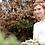 autumnal trees bride red hair wearing mother of pearl wedding hair vine