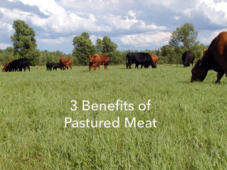 3 Good Reasons to include Pastured (grass-fed) Goat, Lamb or Beef as part of a Healthy Diet - Recipe