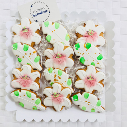 Stargazer and leaf iced biscuits