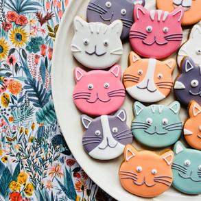 Autumn cat biscuits