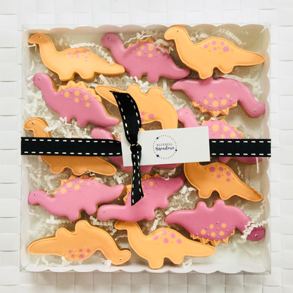 Cute dinosaur iced biscuits for Bjorn