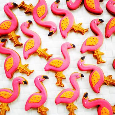 'ello!  I'm a flamingo!