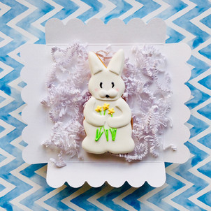 Meet Daphne our daffodil bunny