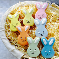 Coloured bunny iced biscuits