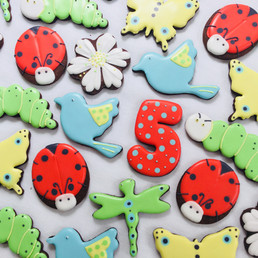 Garden bug and bird iced biscuits for Noah