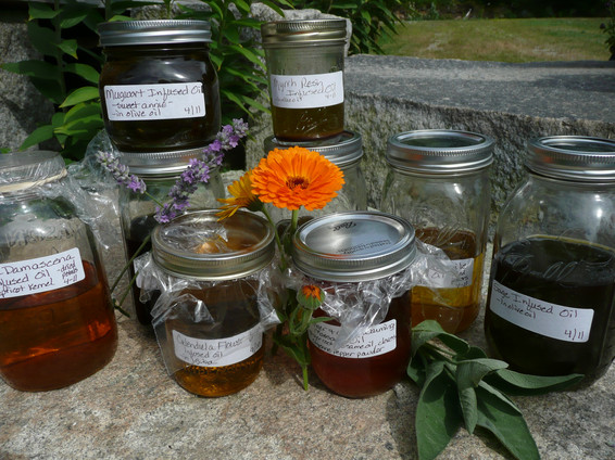Grouping of jars of herbal infused oils.