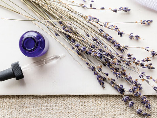 The 5 Most Popular Essential Oils & Why You Need Them
