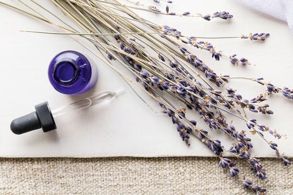 WEB-66_MVilaubi_Lavender_STEssentialOils