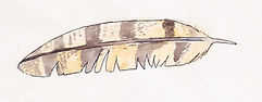 Ainsley watercolor feather.jpg