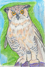 ART Kendra Owl copy.jpg