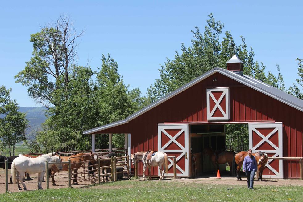 6 8 13 Saddling up at the barn IMG_4679.