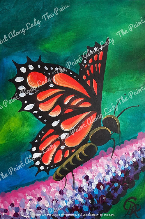 Buddleia Butterfly