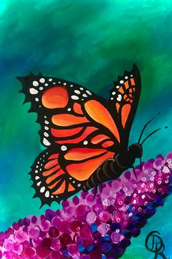Butterfly Buddlea