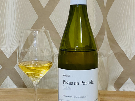 Godello, the fortunately rescued Spanish native grape