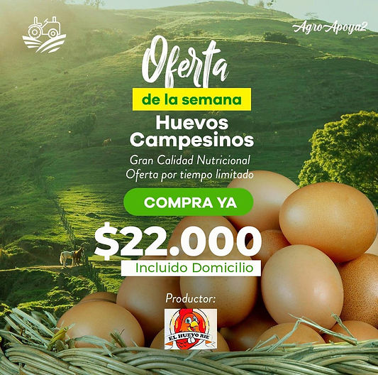 Producto-agricola-local.jpeg