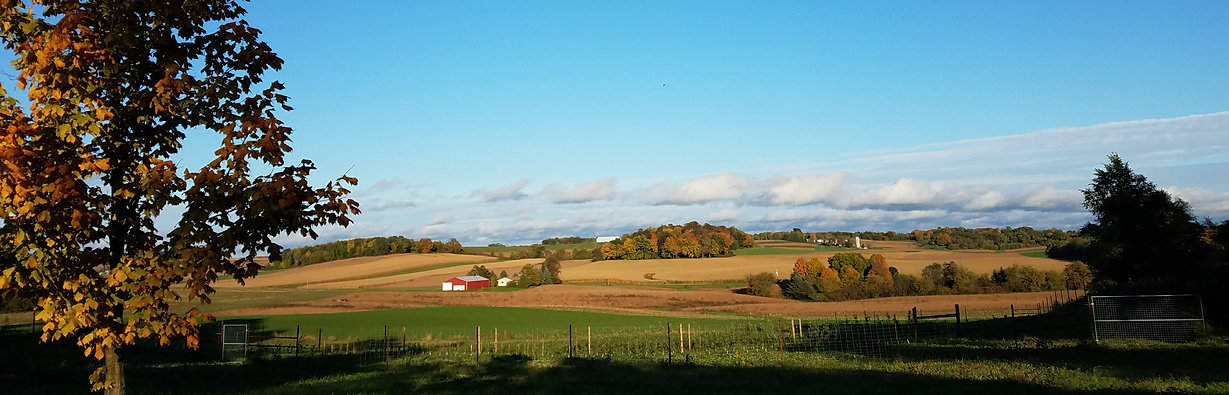 landscape view of Driftless Orchard in the fall