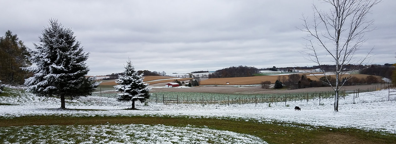 Landscape view of Driftless Orchard in winter