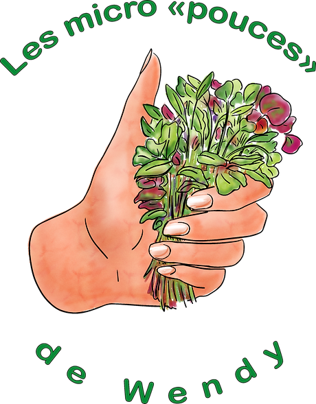 logo-wendy-v6-titre_edited_edited.png