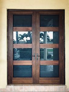 Aluminum Impact Door