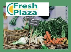Fresh Plaza über automatisierte Bezahlvorgänge zum Schutz für Mitarbeiter und Kunden - PerfectMoney Bezahllösungen.