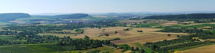 Besuchen Sie PerfectMoney in der Weinregion Heilbronn.