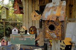 Collection Birdhouses