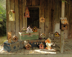 Collection Bird Houses