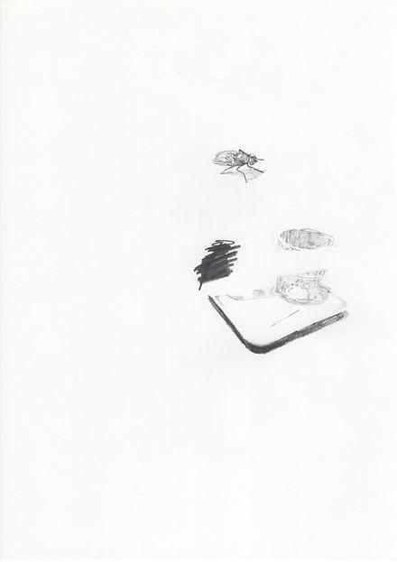 Untitled52.jpg