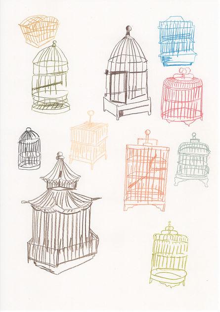 Birds_鳥籠