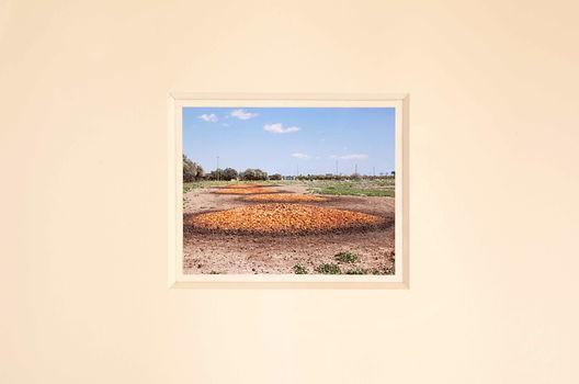 g.-olmo-stuppia,-Paesaggi,-2018-(Sigonel