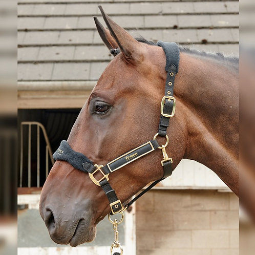 John Whitaker Thornton Headcollar + Rope