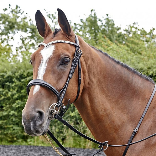 John Whitaker Lynton Cavesson Bridle with Free Sparkly Browband