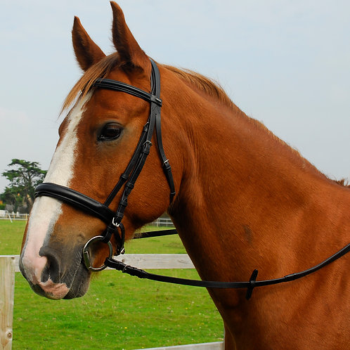 English Leather 'Comfort' Bridle With Cavesson Noseband