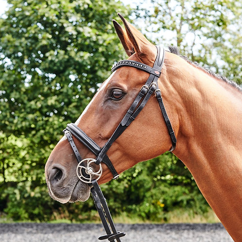 Whitaker Lynton Flash Bridle with Free Sparkly Browband
