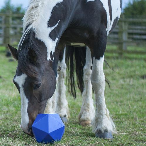 HKM Horse Ball